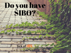 Do you have SIBO