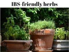 IBS friendly herbs