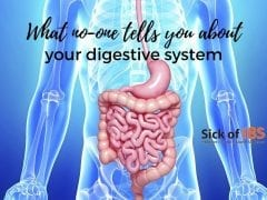 what no-one tells you about your digestive system