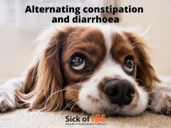 IBS-A alternating constipation and diarrhoea